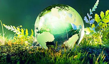 Técnico Meio Ambiente EAD
